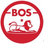 Boss Brands